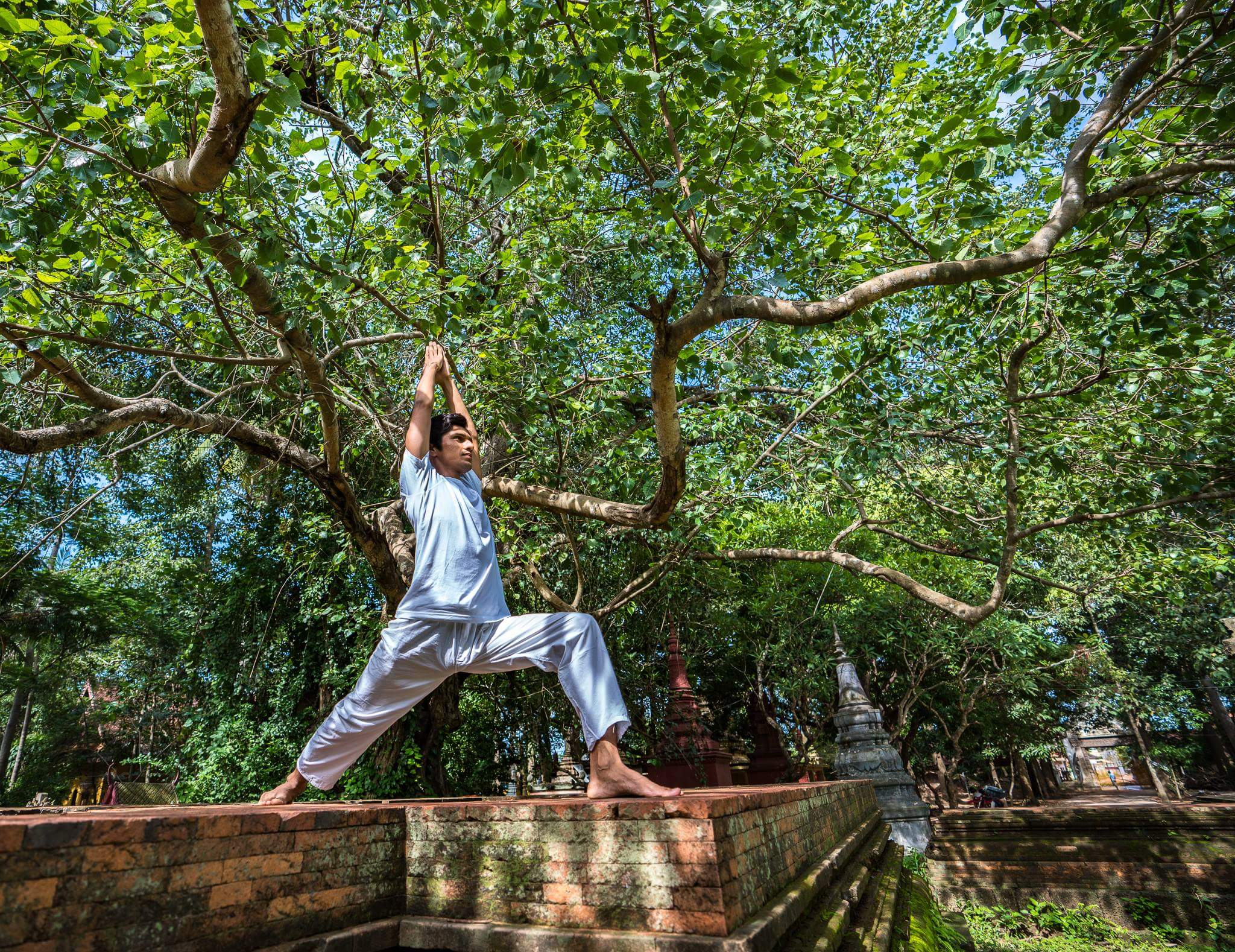 Ashtanga Vinyasa Yoga photo №0