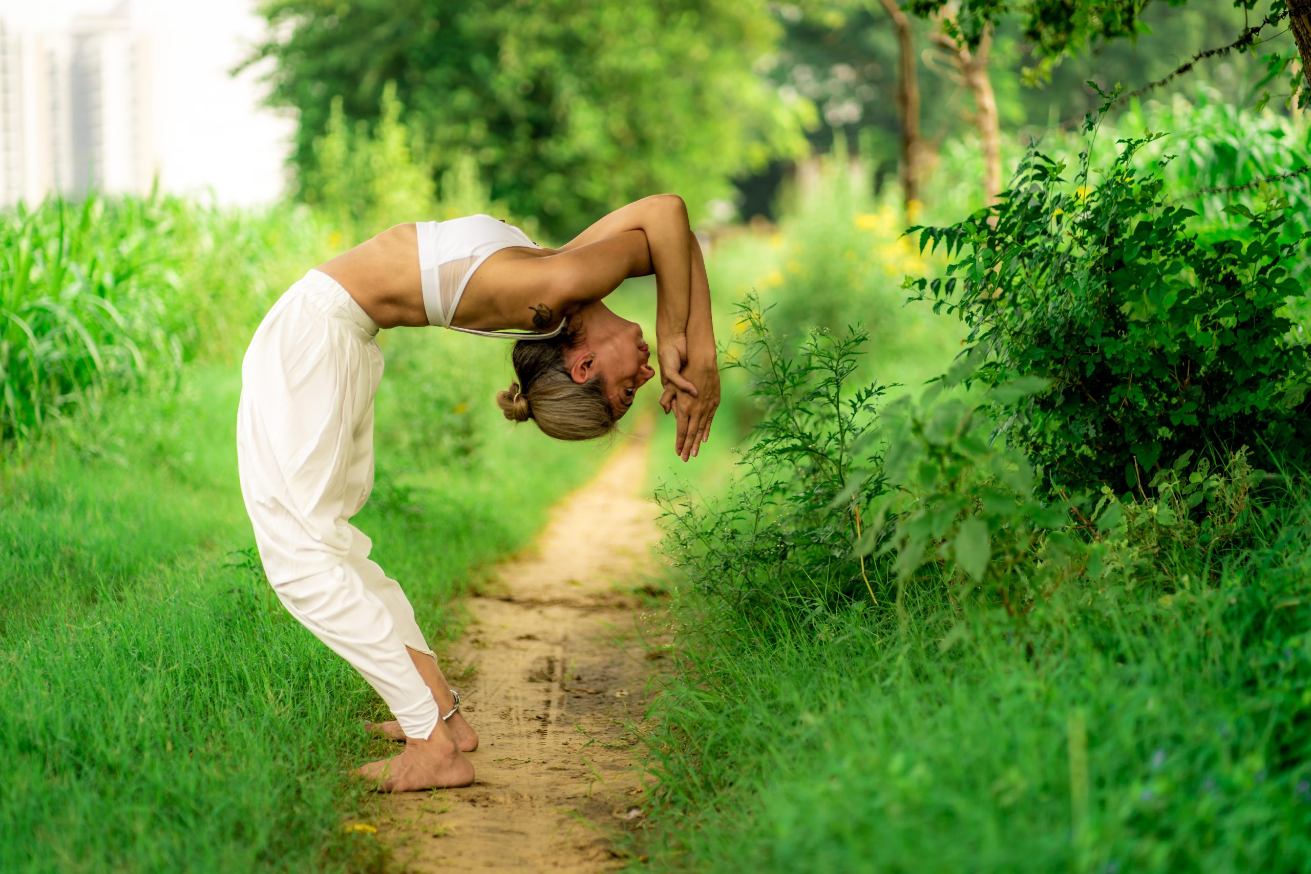 Spine Yoga photo №0