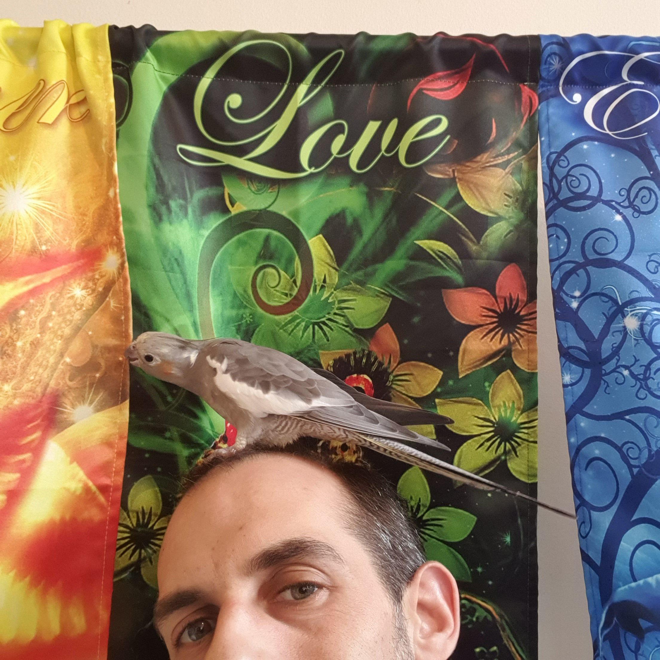 7 Days – 7 Chakras Reiki Healing Meditation photo №5