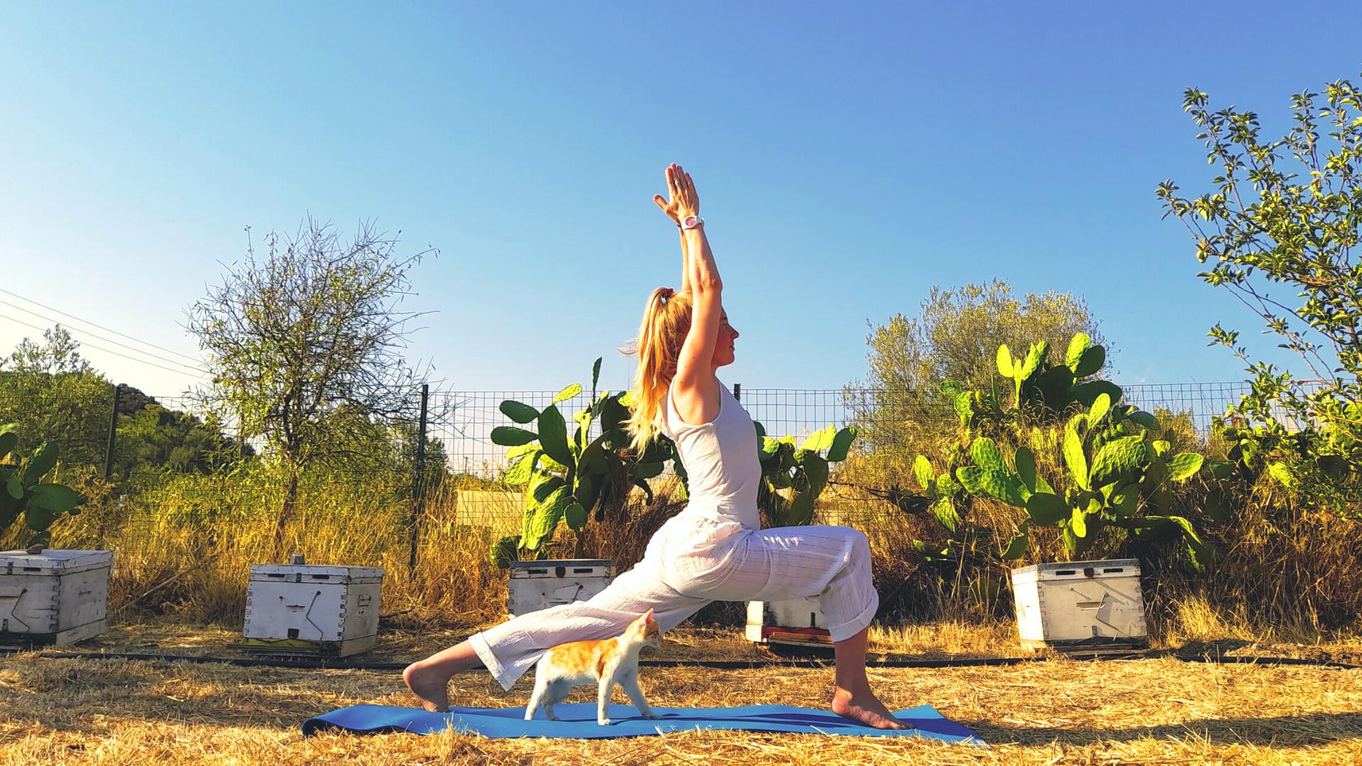 Hatha Yoga for stress photo №0