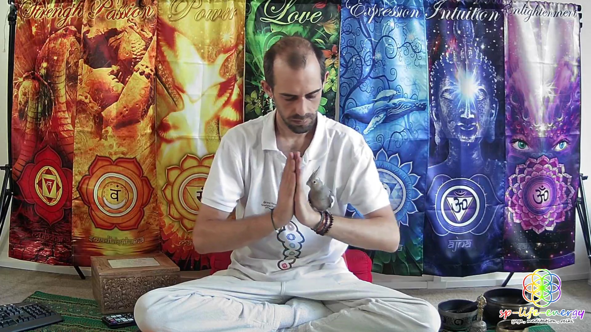 7 Days – 7 Chakras Reiki Healing Meditation photo №1